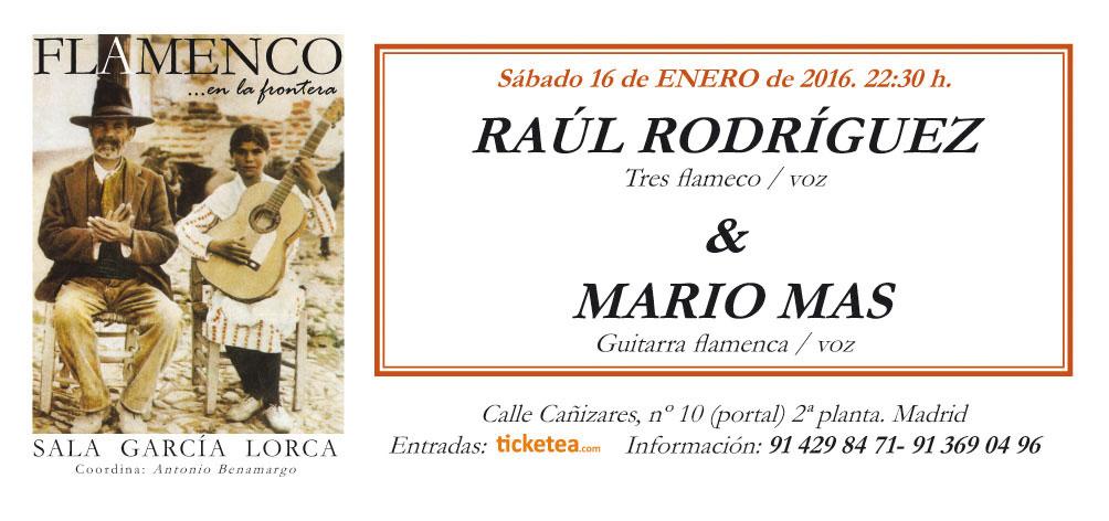 Raul-y-Mario---Casa-Patas